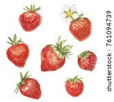 set of red berry strawberry...   Shutterstock . vector #761094739
