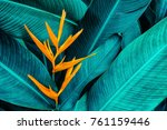 colorful flower on dark... | Shutterstock . vector #761159446