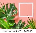 tropical leaves of monstera... | Shutterstock . vector #761266099