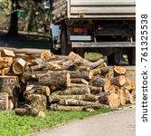 heap of wooden logs in a city... | Shutterstock . vector #761325538