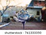 one blue rose | Shutterstock . vector #761333350