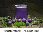 Blueberry Fruits Juice