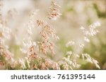 grass flowers in the nature... | Shutterstock . vector #761395144