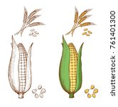 hand drawn ears of wheat and... | Shutterstock .eps vector #761401300