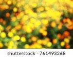 marigold yellow or orange color ... | Shutterstock . vector #761493268