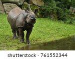 indian rhinoceros in the... | Shutterstock . vector #761552344