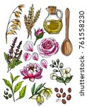 natural cosmetics and medicine. ... | Shutterstock .eps vector #761558230