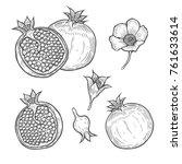 set of pomegranate fruit  berry ... | Shutterstock .eps vector #761633614