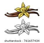 vanilla stick and flower.... | Shutterstock .eps vector #761657434