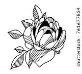 peony vector illustration.... | Shutterstock .eps vector #761677834