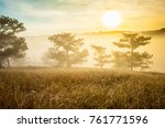 sunrise at the pine hill with...   Shutterstock . vector #761771596