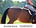 hunter jumper equestrian | Shutterstock . vector #761855023