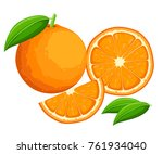 orange with leaves whole and... | Shutterstock .eps vector #761934040