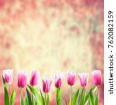beautiful tulip flowers on... | Shutterstock . vector #762082159