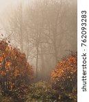 autumn in the vineyard  young... | Shutterstock . vector #762093283