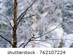 White Snow Covers Trees And...