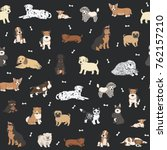 puppy dog pets cute animals...   Shutterstock . vector #762157210
