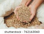 wheat grains in hands | Shutterstock . vector #762163060
