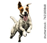 dog breed jack russell terrier... | Shutterstock .eps vector #762183868
