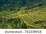 rice fields growing on terraces ...   Shutterstock . vector #762238918
