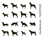Stock vector set of black silhouettes of dogs of different breeds on a white background 762259153
