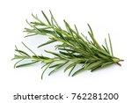 rosemary isolated on white...   Shutterstock . vector #762281200