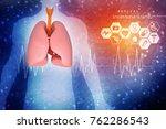 healthy human lungs 3d... | Shutterstock . vector #762286543