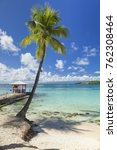 palm tree and jetty at tropical ... | Shutterstock . vector #762308464