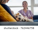 Stock photo young hispanic woman working as veterinary vet talking to dog owner on house call animal doctor 762446758