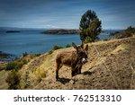 two donkeys with view across la ... | Shutterstock . vector #762513310