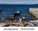 two donkeys with view across la ... | Shutterstock . vector #762513328