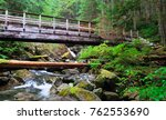 a bridge and lush forest near...   Shutterstock . vector #762553690