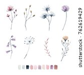 painted watercolor set of wild... | Shutterstock . vector #762619429