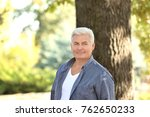 handsome mature man near tree... | Shutterstock . vector #762650233