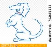 cute dog. puppy dachshund....   Shutterstock .eps vector #762655858