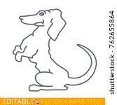 cute dog. puppy dachshund....   Shutterstock .eps vector #762655864
