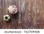 sea shells on rustic wooden... | Shutterstock . vector #762709408