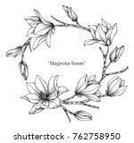 Wreath Magnolia Flower Drawing...