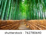 bamboo forest in kyoto  japan. | Shutterstock . vector #762780640