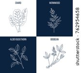 vector collection of four hand... | Shutterstock .eps vector #762954658
