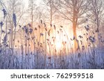 Winter Beautiful Landscape Wit...