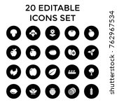 set of 20 organic filled icons... | Shutterstock .eps vector #762967534