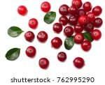 cranberry with leaves isolated... | Shutterstock . vector #762995290