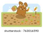 brown bunny harvesting carrots...   Shutterstock .eps vector #763016590