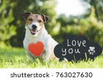 Adorable Dog With Heart Shape...