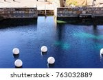blue hole  new mexico  natural...   Shutterstock . vector #763032889