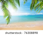 Stock photo palm and tropical beach 76308898
