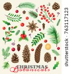merry christmas botanical.... | Shutterstock .eps vector #763117123