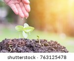Small photo of Tree planting on soil with hand watering new life of growing green bud for agricultural business investment, csr environmental protection, sustainable environment, and Tu Bishvat (B'Shevat) concept