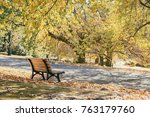 wooden bench in autumn outdoor... | Shutterstock . vector #763179760